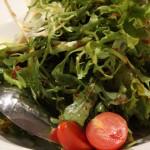 ανάμεικτη σαλάτα με βινεγκρέτ λιαστής ντομάτας με παλαιωμένη γραβιέρα