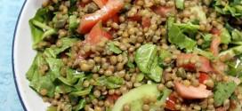 salata-fakes-spanaki